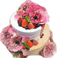 ネーキッドケーキ
